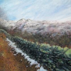 Cumbrian Wall near Low Pike