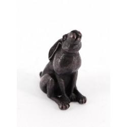 Bonsai hare moongazing