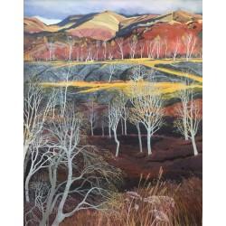 Silver Birches, Hodge Close II