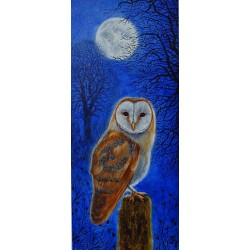 Moonlit Barn Owl