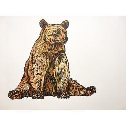Mr Bear 4/25